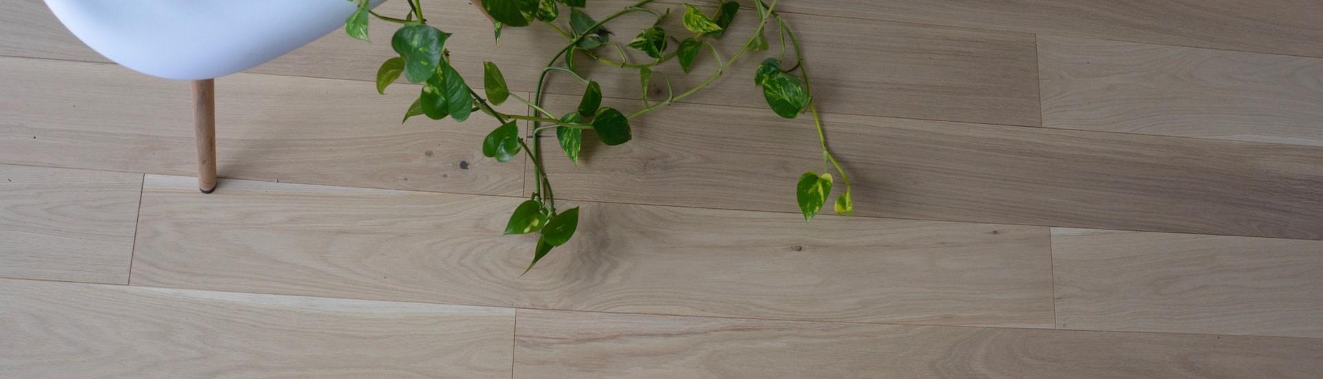 Parquet chêne contrecollé/flottant, la collection